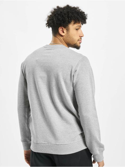 Dickies Pullover Washington gray