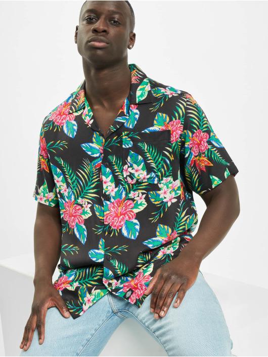 Dickies Shirt Shiloh black