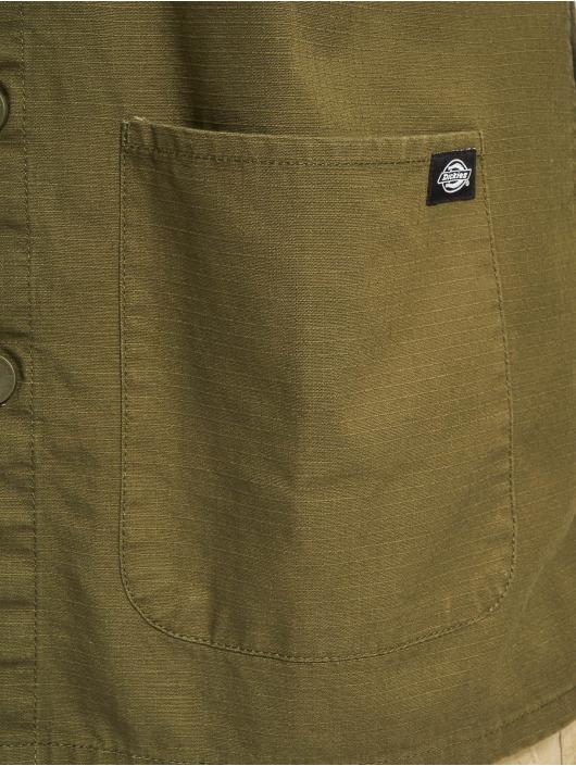 Dickies Shirt Kempton olive