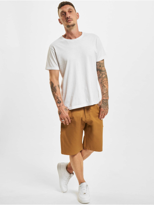 Dickies Shorts Fairdale braun