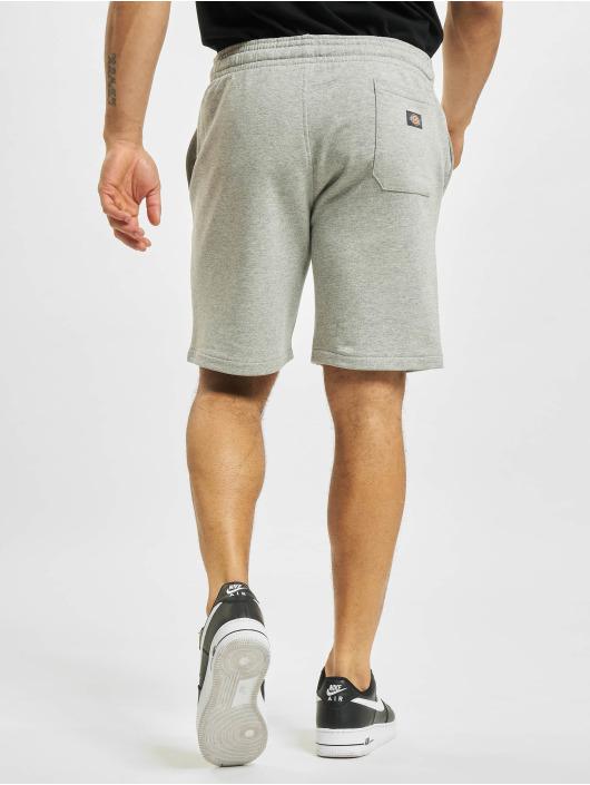 Dickies Shorts Champlin grau