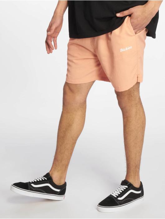 Dickies Shorts Rifton rosa