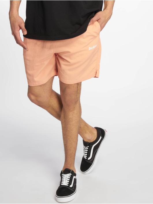 Dickies shorts Rifton rose