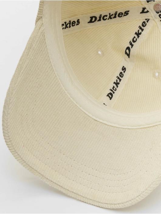 Dickies Snapback Cap Amenia beige