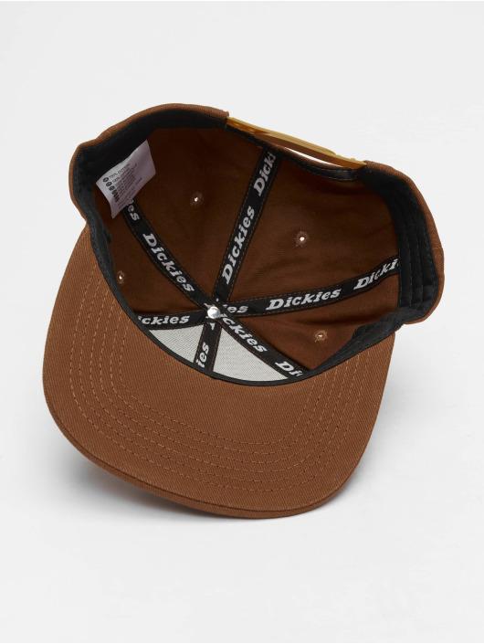 Dickies Snapback Cap Callicoon braun
