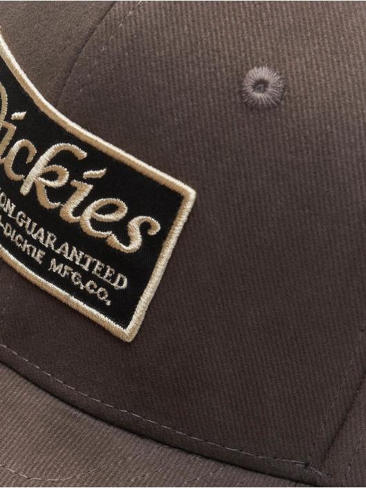 Dickies Snapback Cap Callicoon grau