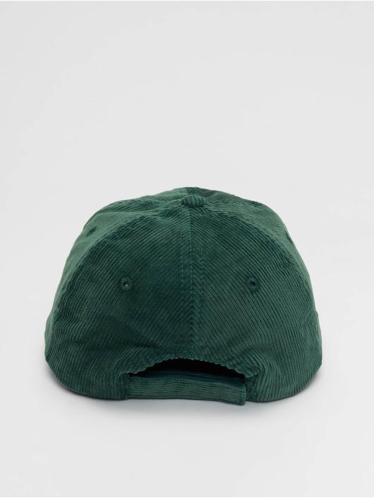 Dickies snapback cap Amenia groen