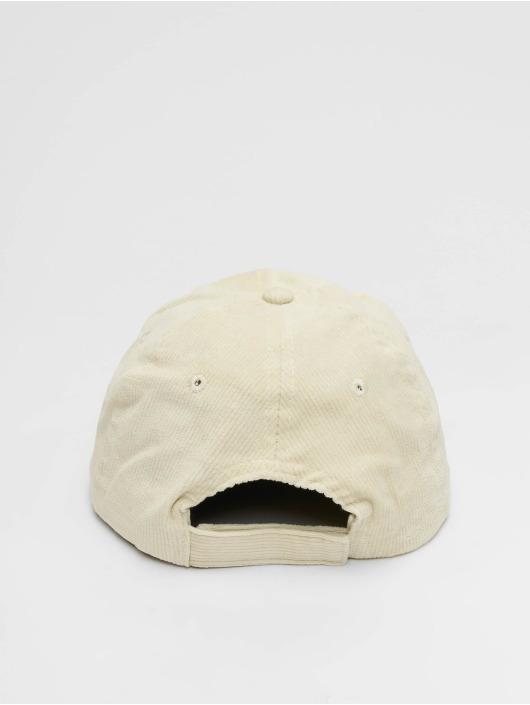 Dickies Snapback Caps Amenia beige