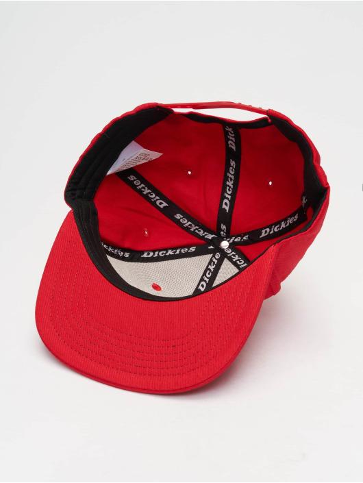 Dickies Snapback Caps Muldoon red