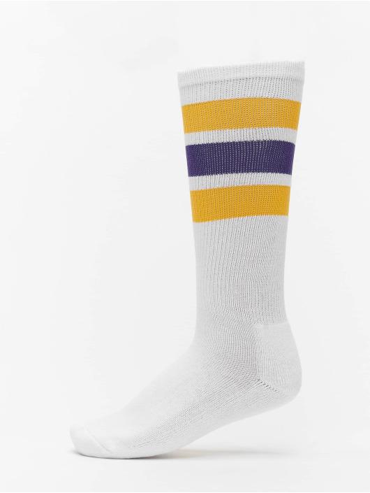 Dickies Socken Atlantic Cityr bunt