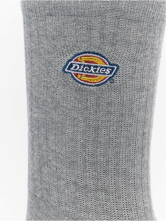 Dickies Socks Valley Grove 3-Pack grey