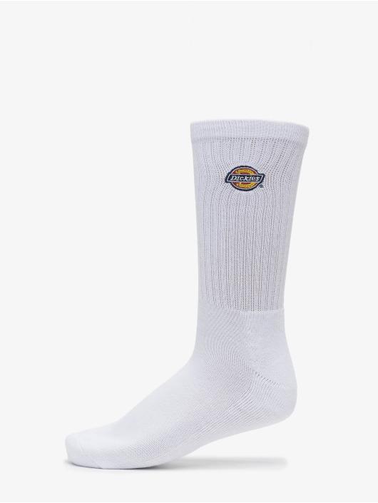 Dickies Socks Valley Grove 3-Pack white