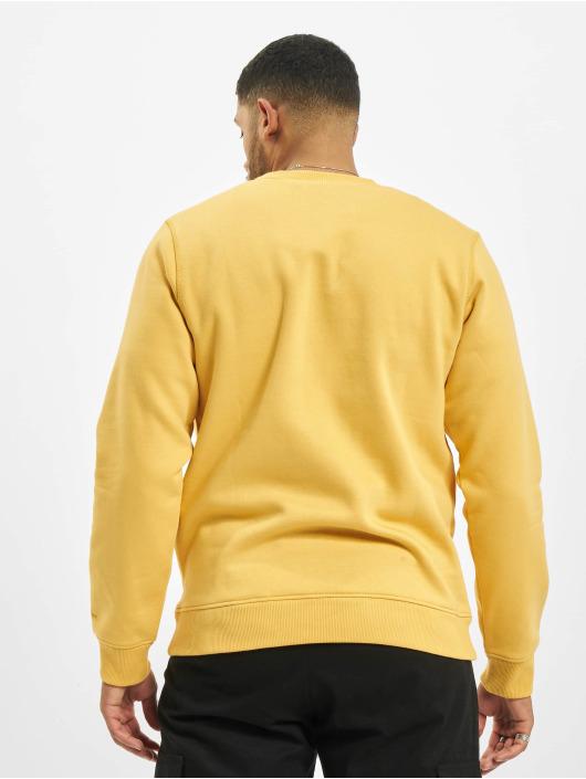 Dickies Sweat & Pull Pittsburgh jaune