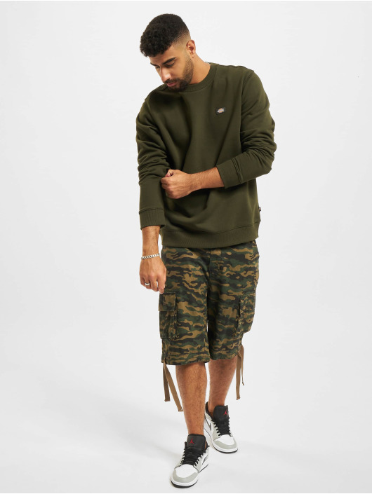 Dickies Sweat & Pull Oakport olive