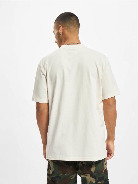 Dickies T-Shirt Saxman beige