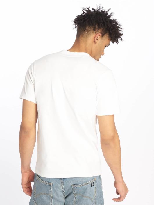 Dickies T-Shirt Pamplin blanc