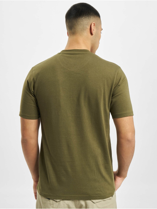 Dickies T-Shirt Icon Logo green