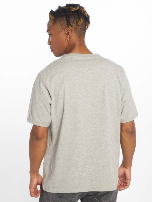 Dickies T-Shirt Philomont grey