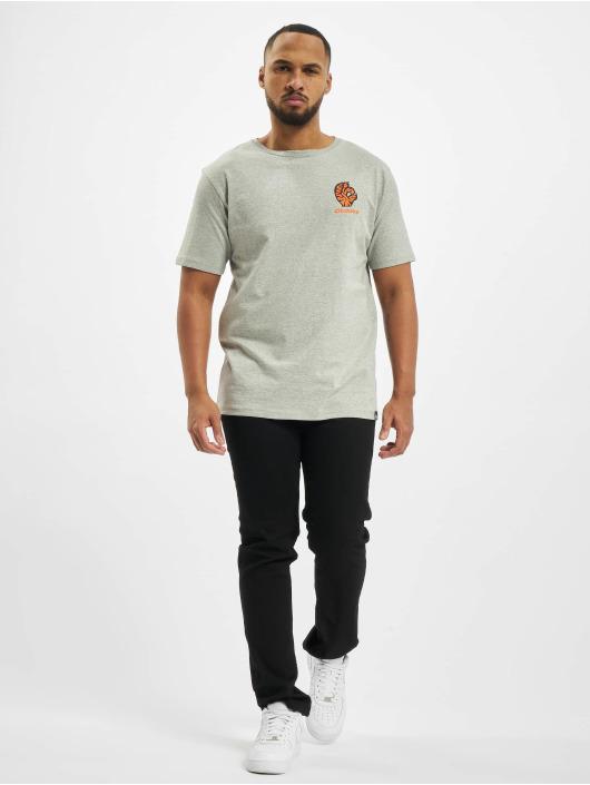 Dickies T-Shirt Schriever grey