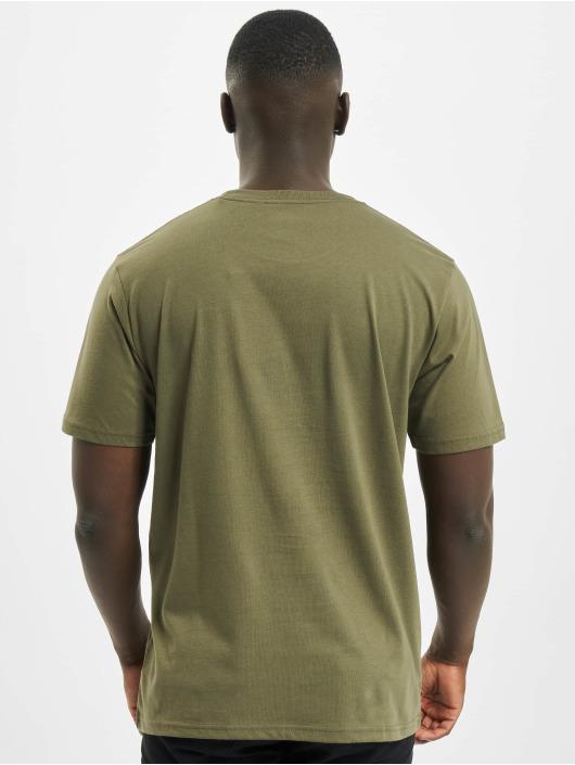 Dickies T-Shirt Stockdale olive