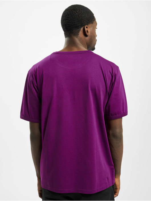 Dickies T-Shirt Philomont purple