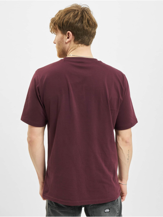Dickies t-shirt Mapleton rood