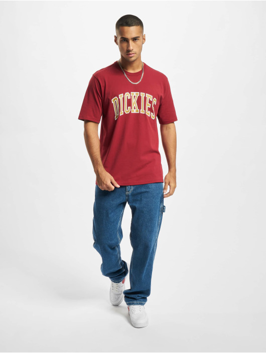 Dickies T-Shirt Aitkin rot