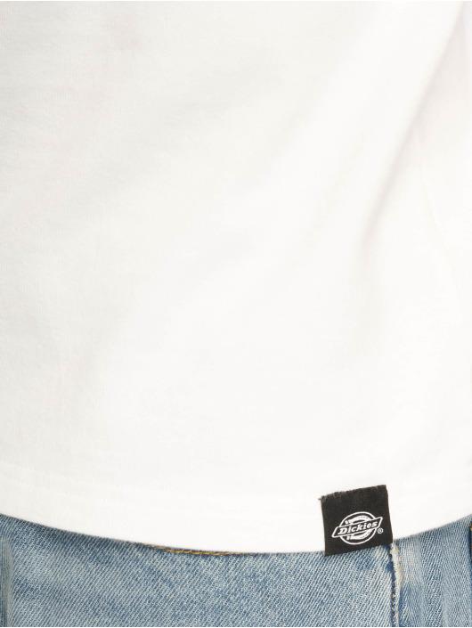 Dickies T-Shirt Pamplin weiß