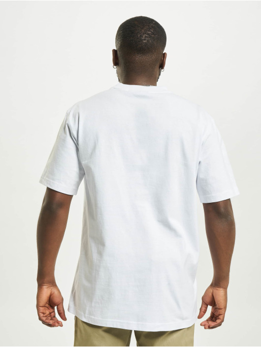 Dickies t-shirt Loretto wit