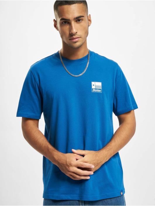 Dickies T-shirts Taylor SS blå