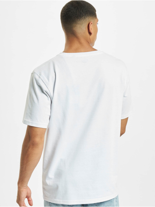 Dickies T-Shirty Campti bialy