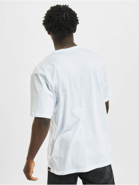 Dickies T-Shirty Aitkin bialy
