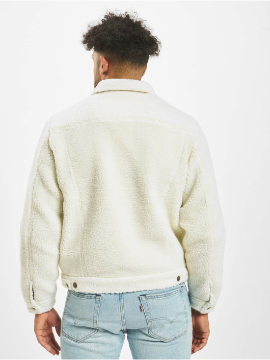 Dickies Transitional Jackets Cawood hvit