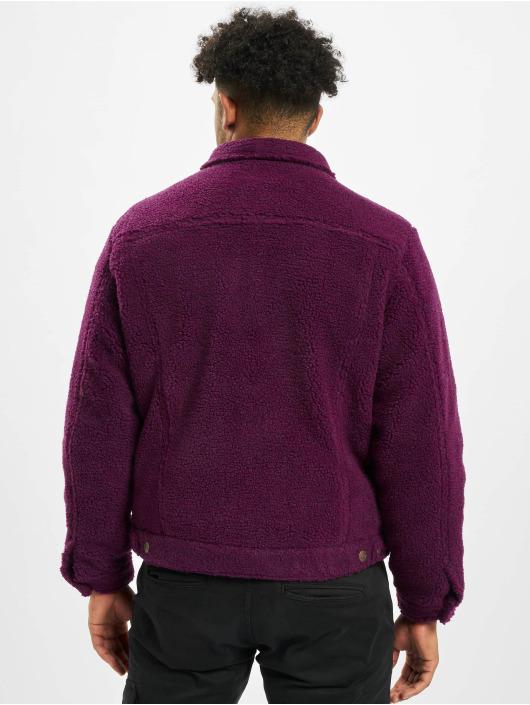 Dickies Übergangsjacke Cawood violet