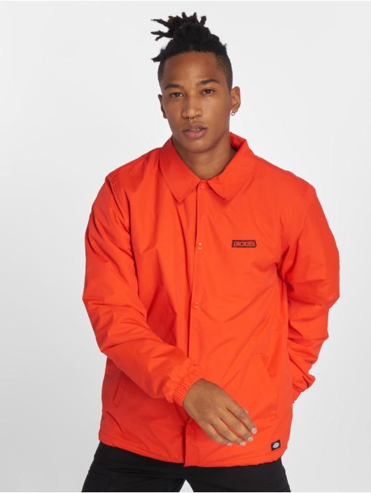 Dickies Välikausitakit Dewitt oranssi