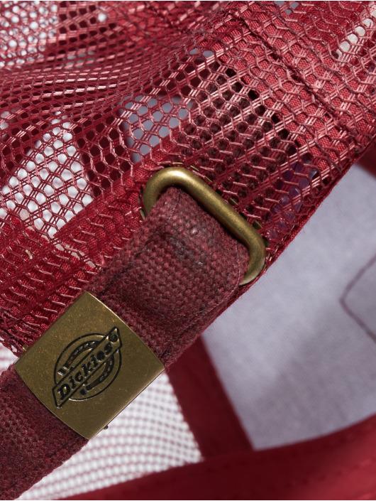 Dickies Verkkolippikset Jonesville punainen