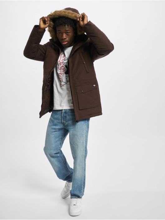 Dickies Winter Jacket Curtis brown