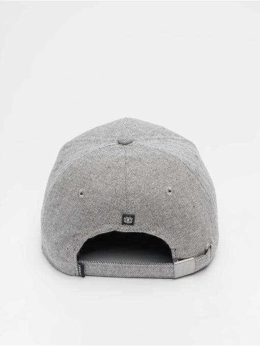 Element Snapback Cap Camp III gray