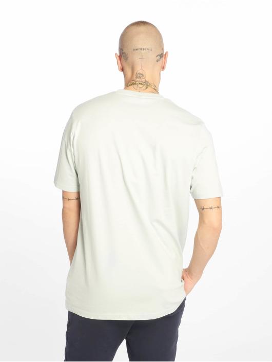 Ellesse T-Shirt Canaletto grün