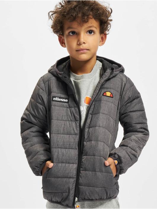 Ellesse Winter Jacket Regalio Padded grey