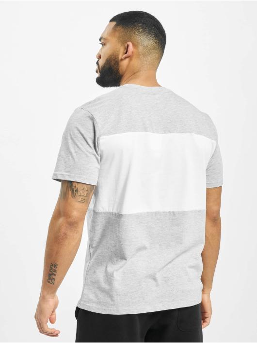 FILA T-Shirt Day grey