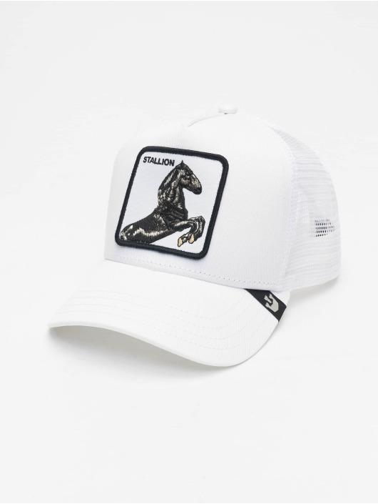Goorin Bros. Trucker Cap Stallion bianco
