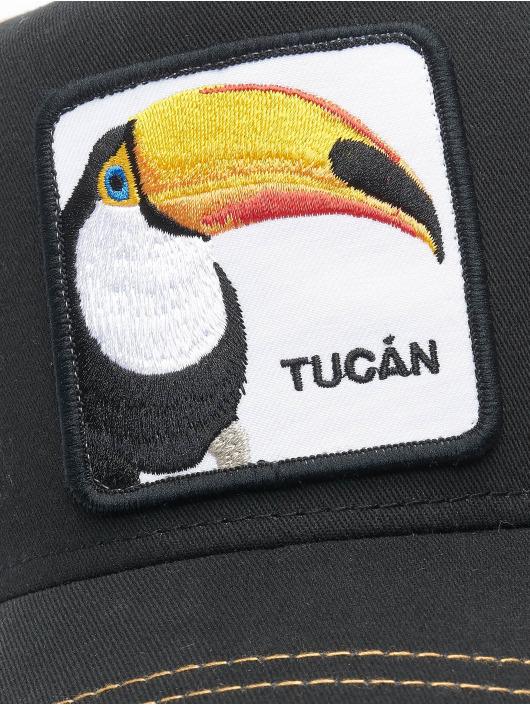 Goorin Bros. Trucker Cap Tucan schwarz