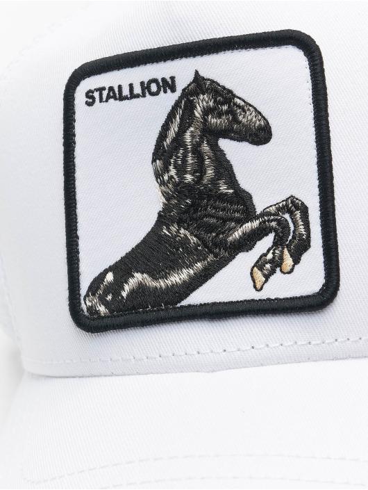 Goorin Bros. Trucker Caps Stallion bílý