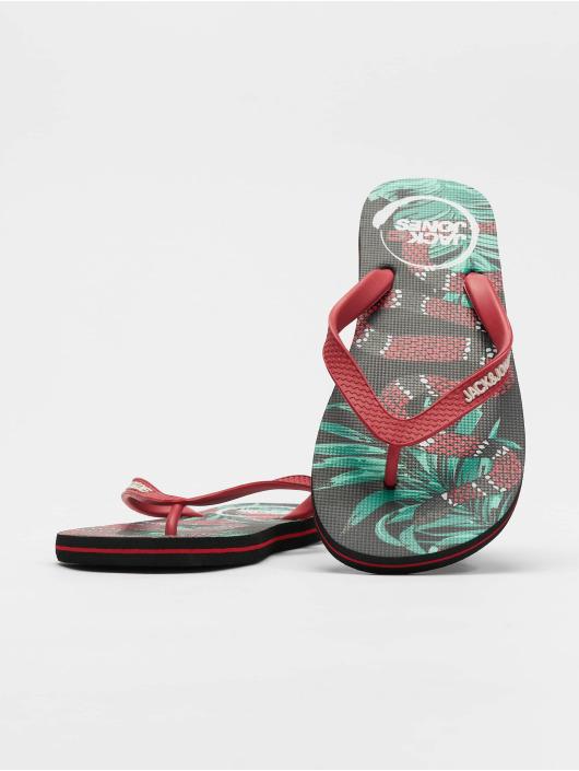 Jack & Jones Badesko/sandaler jfwAnimal Print Pack svart