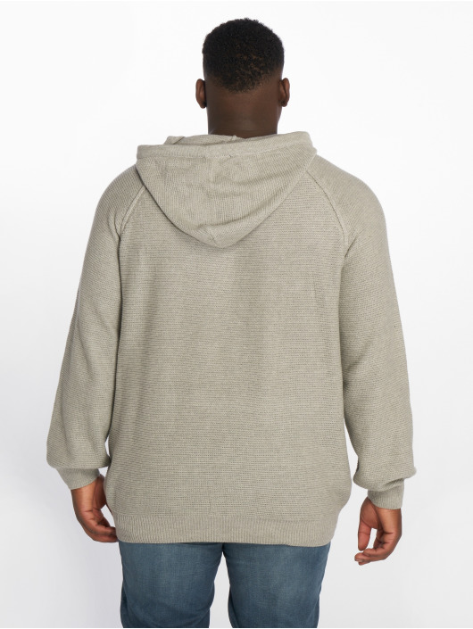 Jack & Jones Hoody jorYeah grau