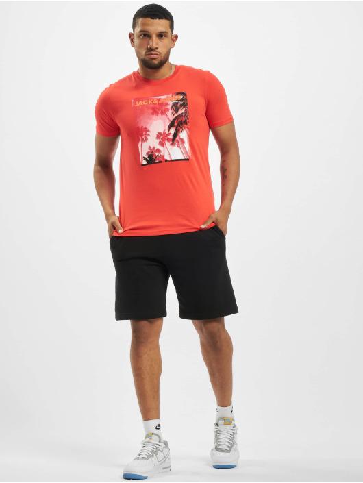 Jack & Jones T-Shirt jcoPalm rot