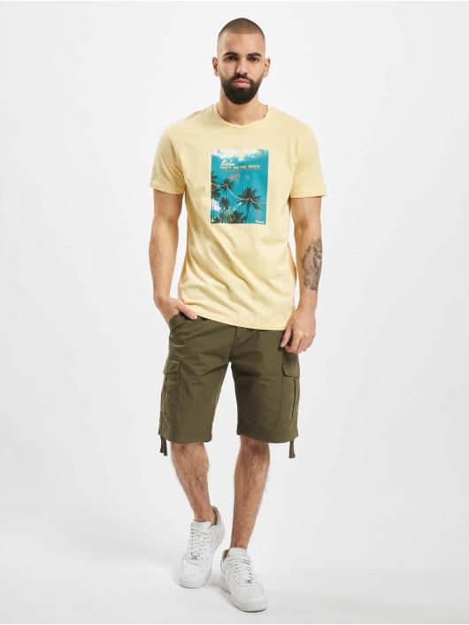 Jack & Jones T-Shirty jorLuciano Organic zólty