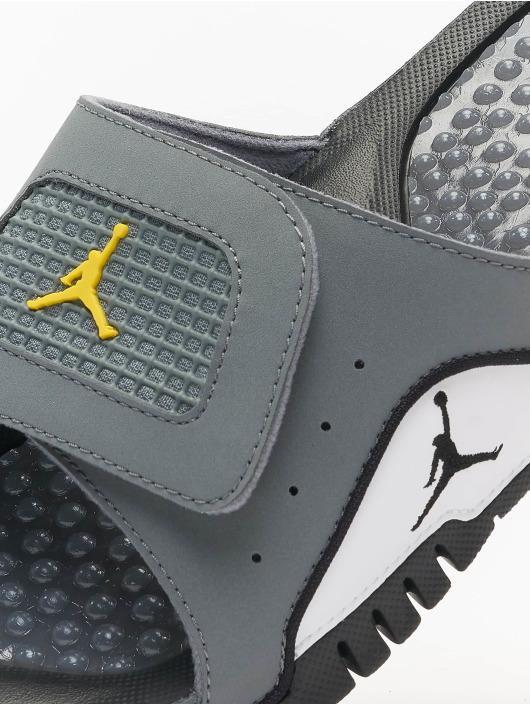 Jordan Claquettes & Sandales Hydro IV Retro gris