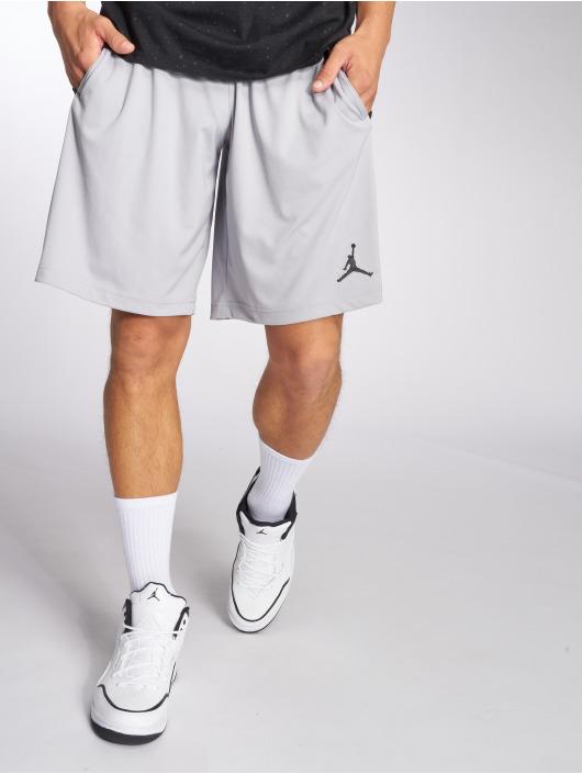 Jordan Short Dri-Fit 23 Alpha Training gray